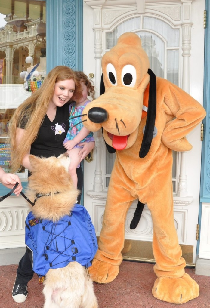 Disney with Special Needs: Preparing Your Service Dog for Travel
