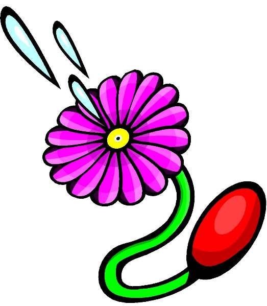 Squirting Flower 61
