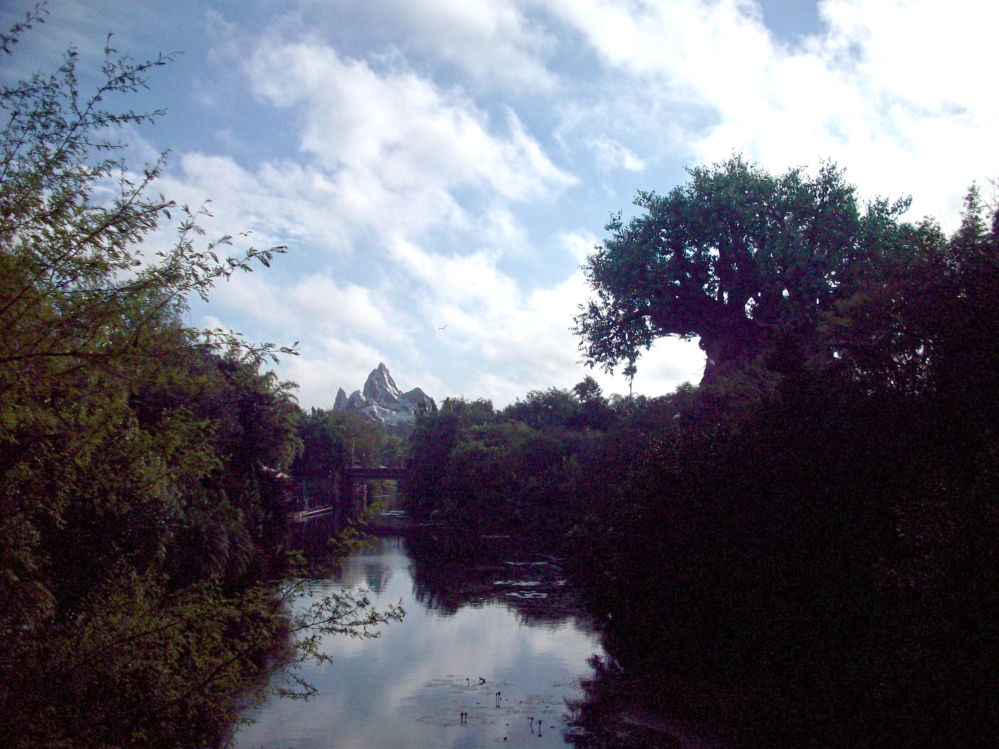 Wordless Wednesday: Two Continents at Disney's Animal Kingdom