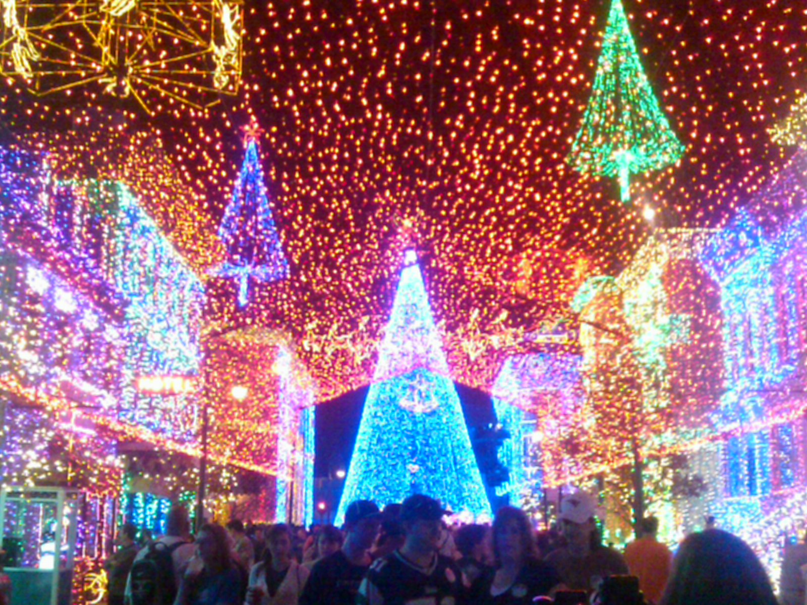 its - Disneyworld At Christmas Time