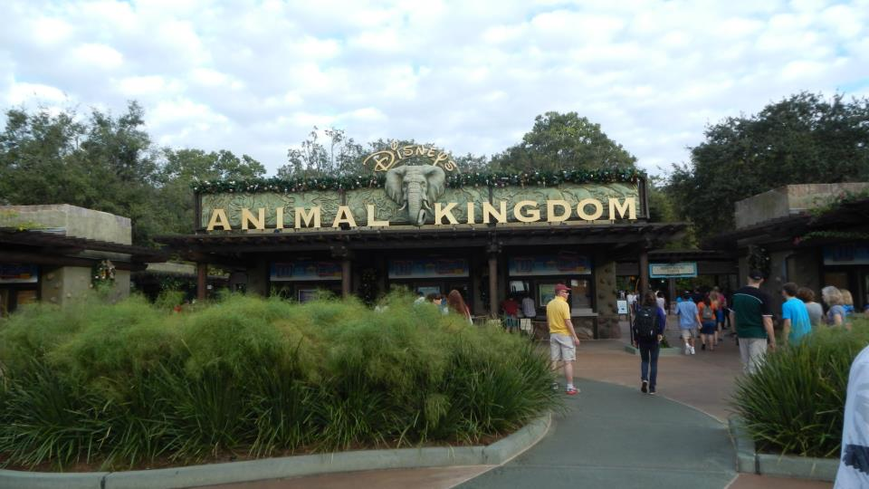 Disney Vacation Planning: Animal Kingdom
