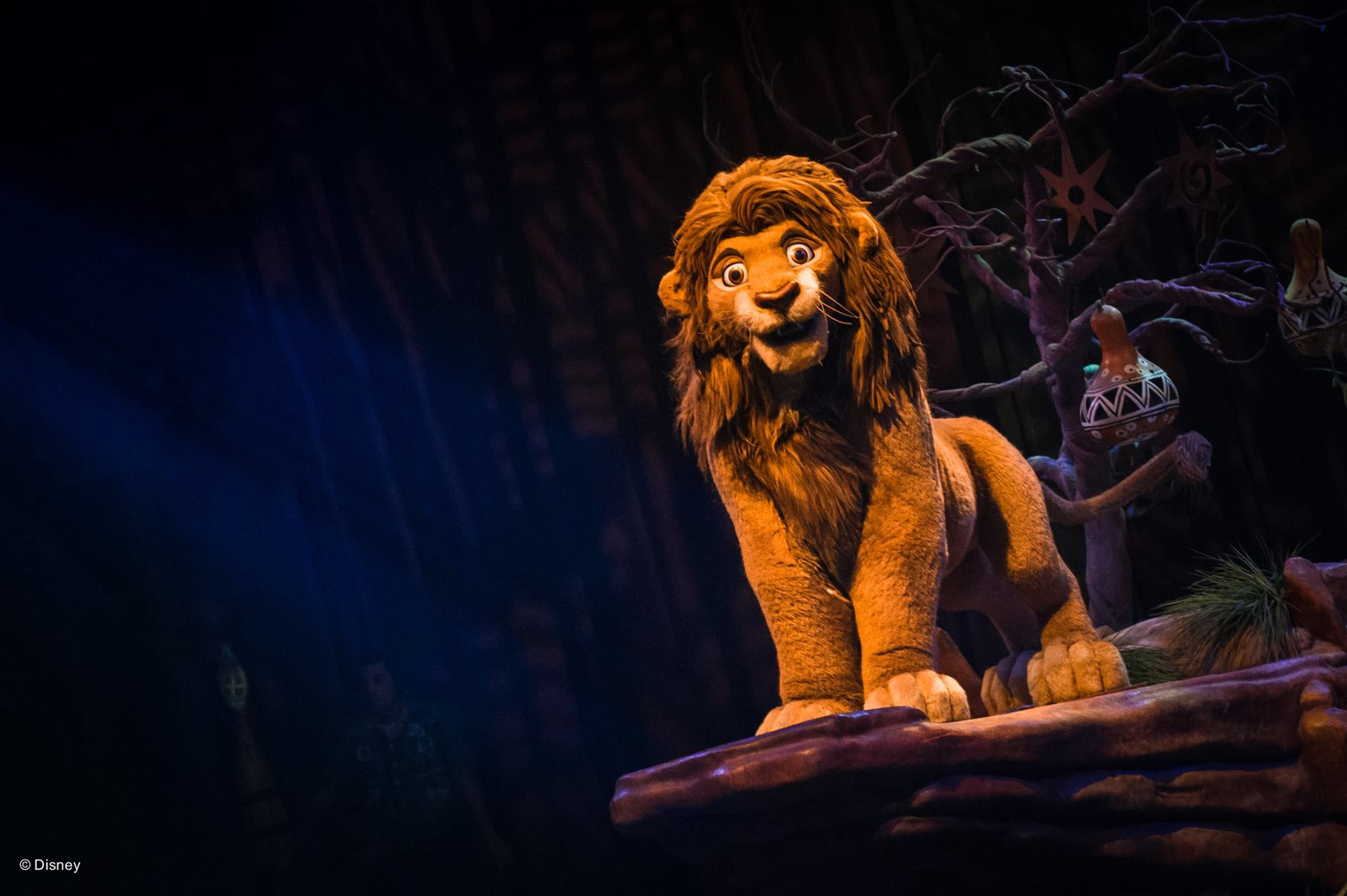 Terrific Tuesdays: Festival of The Lion King