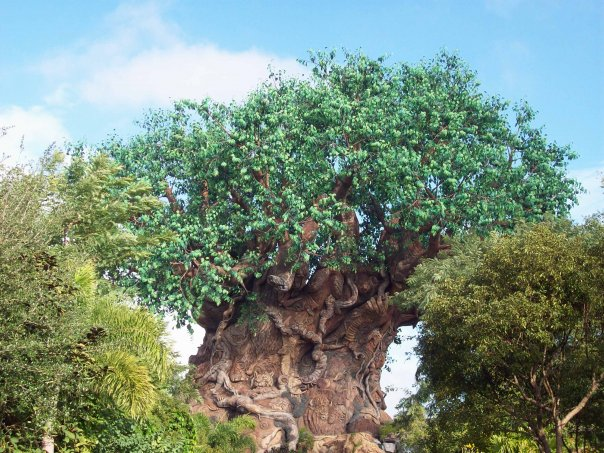 the tree of life | The Affordable Mouse